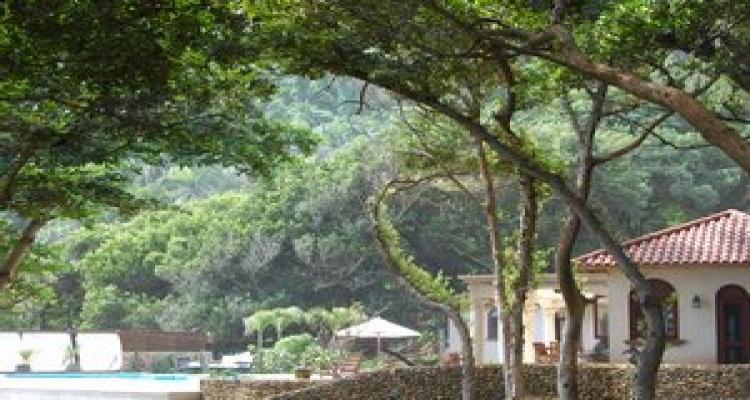 La Catalina,Sold,1129