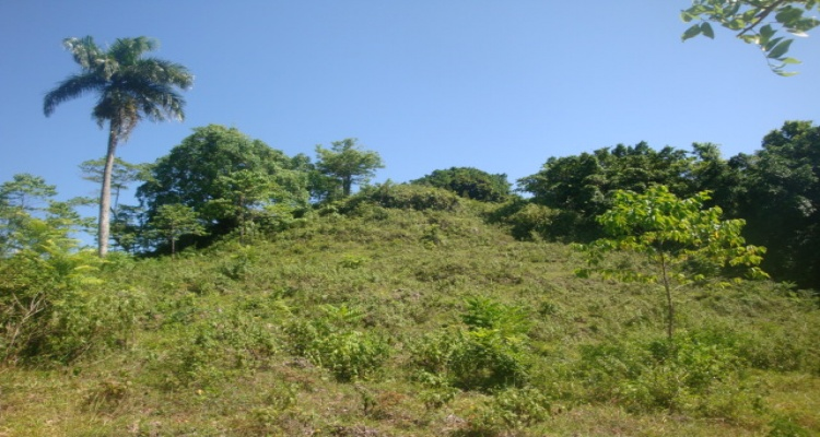 Rio San Juan,Sale - Land,1167