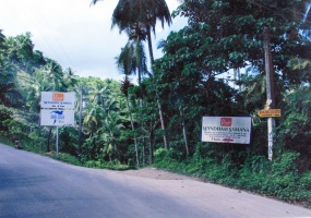 Las Terrenas,Sale - Lots,1008