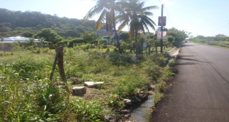 Higway 5,Abreu,33000,Sale - Lots,Higway 5,1010