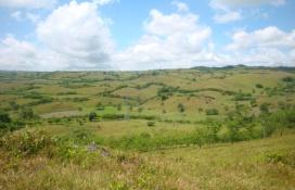Cabrera,Sale - Farms,1205