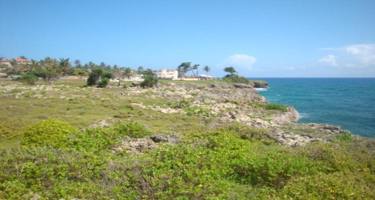 Cabrera,Sale - Land,1218