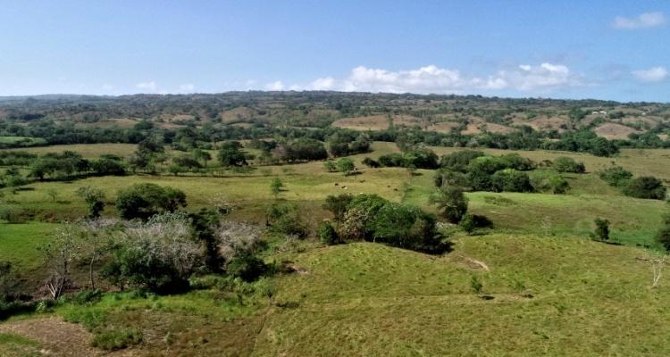 Cabrera,Sale - Farms,1272