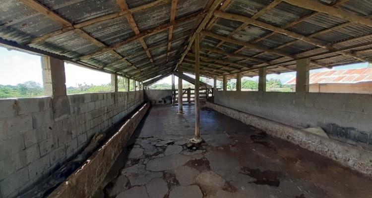 Cabrera,Sale - Farms,1273