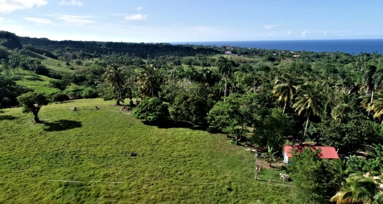 Cabrea,Sale - Lots,1282