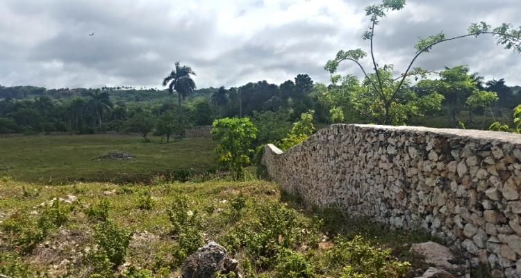Cabrera,Sale - Land,1311