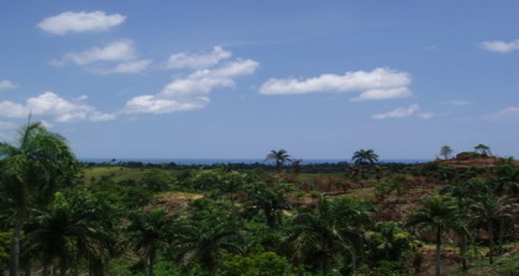 Rio San Juan,Sold,1051