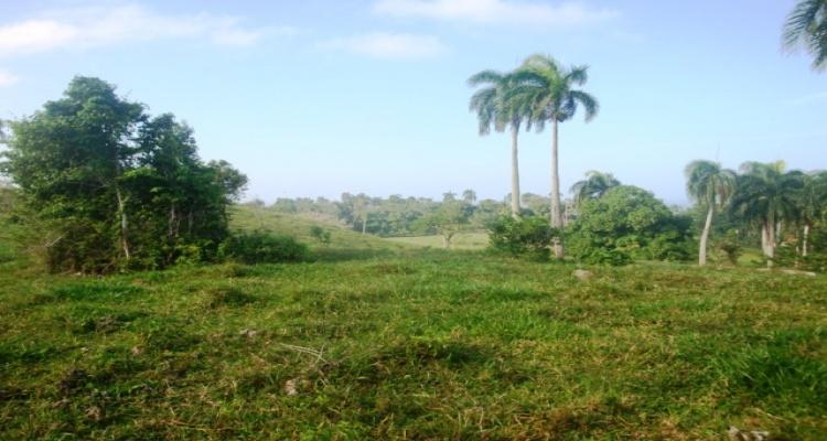 Cabrera,Sale - Land,1053