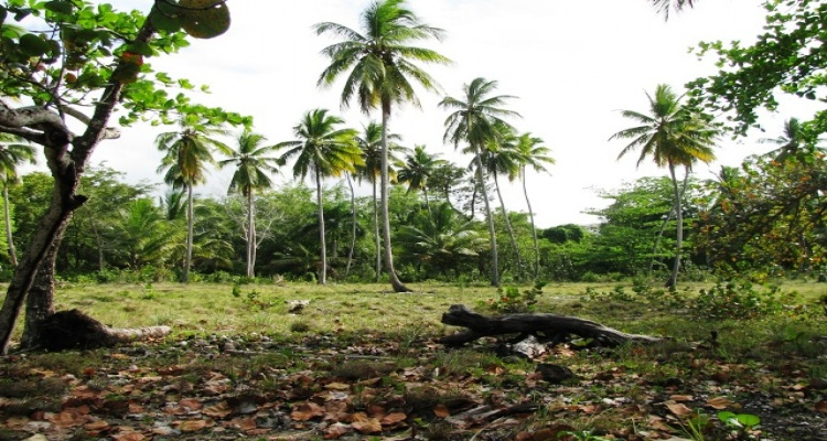 Playa Magante,Sale - Land,1063