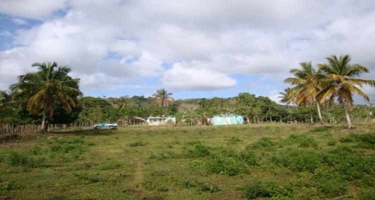 Abreu,Sale - Farms,1077