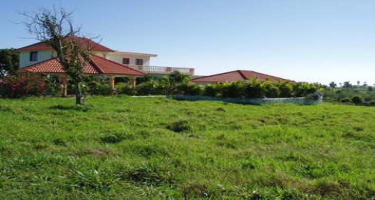 Abreu,Sale - Farms,1081